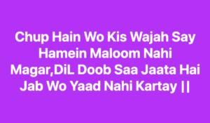 Chup Hain Wo Kis Wajah Say Hamein Maloom Nahi Magar,DiL Doob Saa Jaata Hai Jab Wo Yaad Nahi Kartay - dard sad alone shayari shayarino1.com